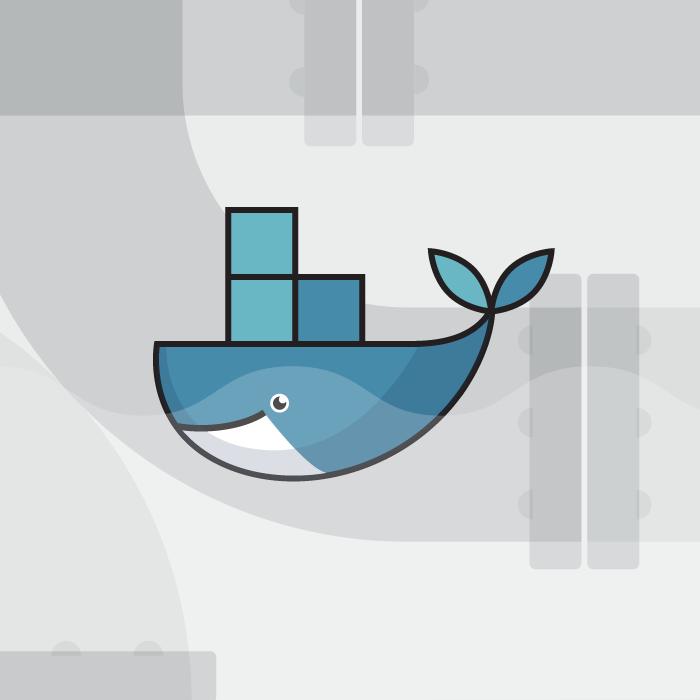 Whale-pic-xl